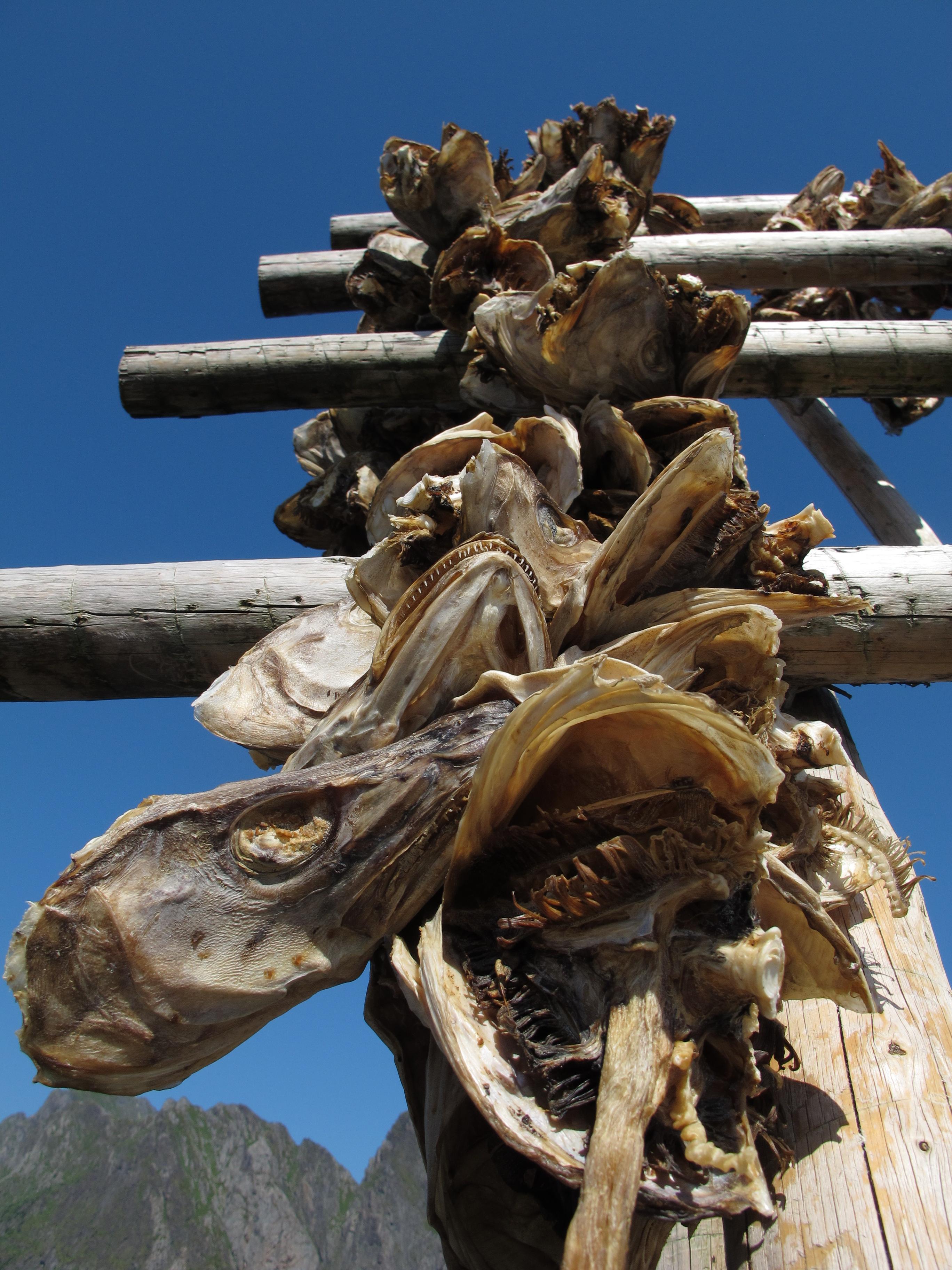 Drying Fish at Sakrisoy