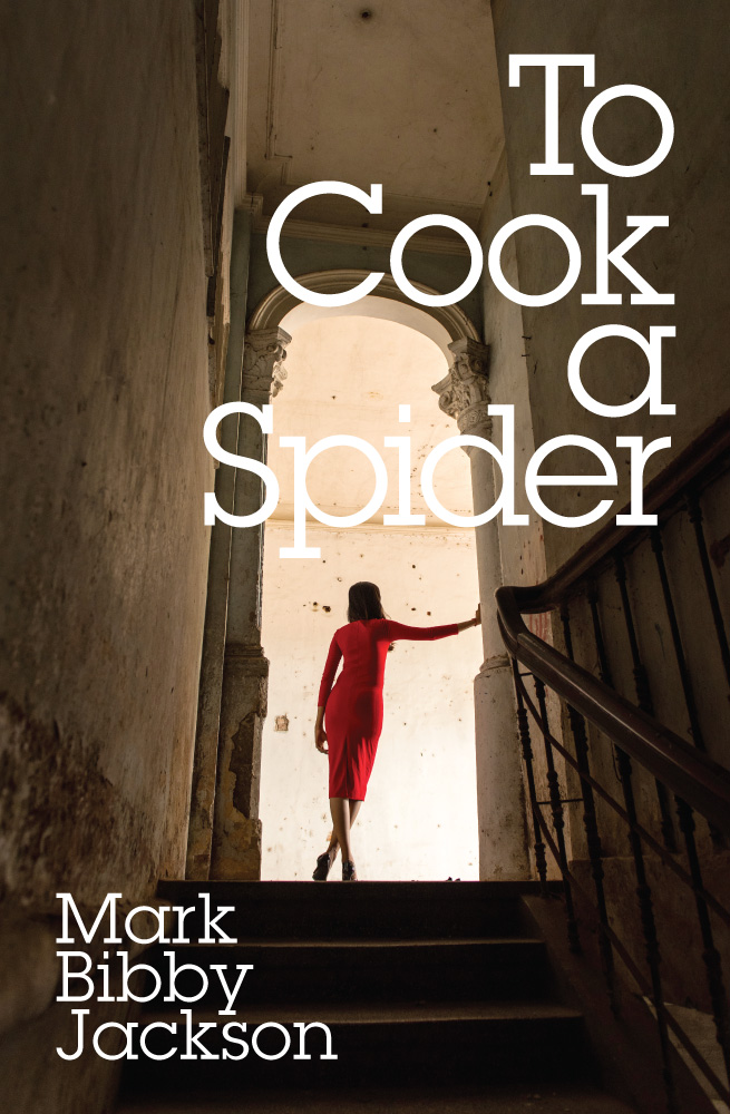 To Cook A Spider Final Cover 03.10.2015 Web