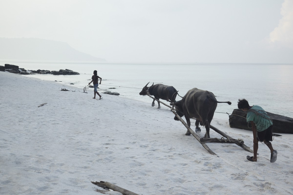 children-with-buffalos-on-Koh-Rong-beach_87801-1200×800